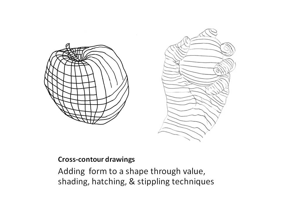 How To Teach Contour Line Drawing : Images about art education drawing on pinterest