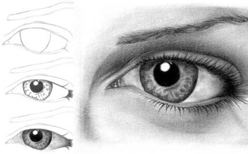 We draw the eye, we start with an oval shape like the process below