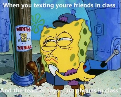meme (33)